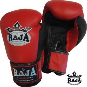 RAJA Double Clor Competition Gloves RBGV-1#2212